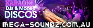 Corporate or home party events Mega-Soundz got you covered